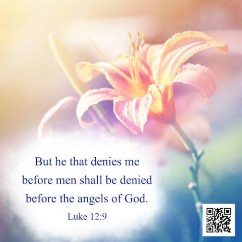 Bible Verse – Luke 12:9