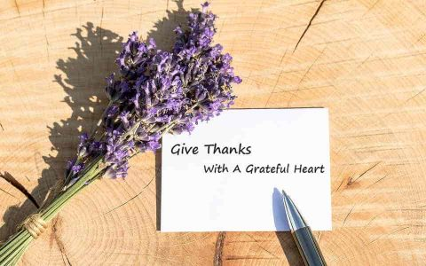 Give Thanks – With A Grateful Heart