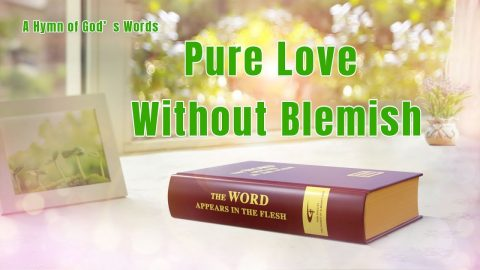 Pure Love Without Blemish (with Lyrics)