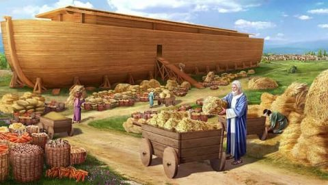 Noah Builds the Ark - Bible Stories