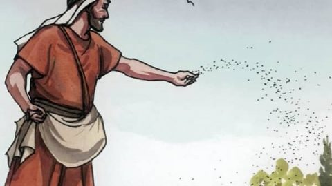 Parables of Jesus - Parable of the Sower Meaning