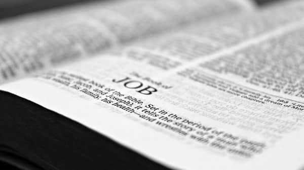 bible job reading