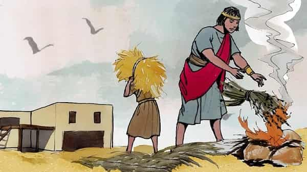 the Parable Weeds