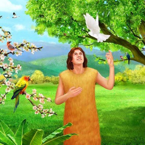 Adam in the Bible
