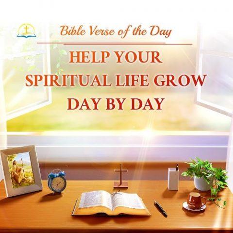 bible verse of the day - Luke 12:6-7