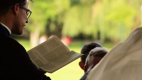 Are Pastors and Elders Really All Established by the Lord?
