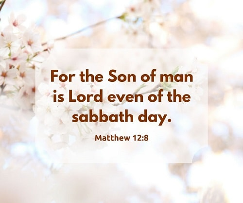 Matthew 12:8,