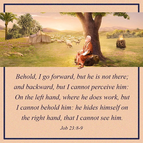 Job 23:8-9