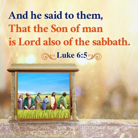 Lord of the Sabbath – Luke 6:5