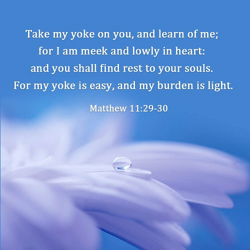 Matthew 11:29-30 - For my yoke is easy, and my burden is light - Trust in God Bible Verse