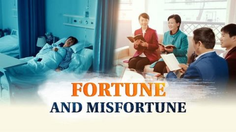 Fortune and Misfortune (Full Move) - Can Money Buy Happiness?