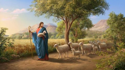 Seeking the Lost Sheep—Why Did Jesus Use Parable?