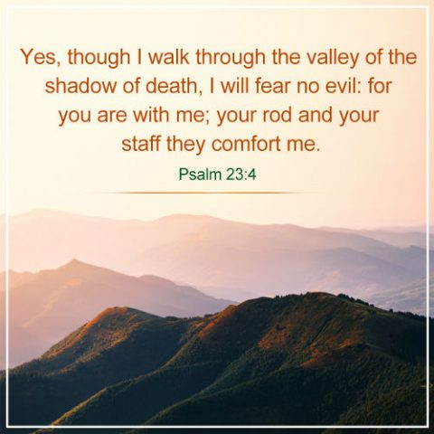 Psalm 23:4 - I Will Fear No Evil For God Is With Me, Bible Verses of the day