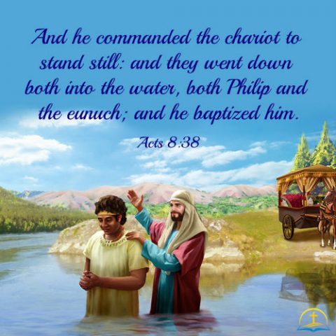 Acts 8:38 - The Baptism of the Ethiopian Eunuch, Bible Verse of the Day