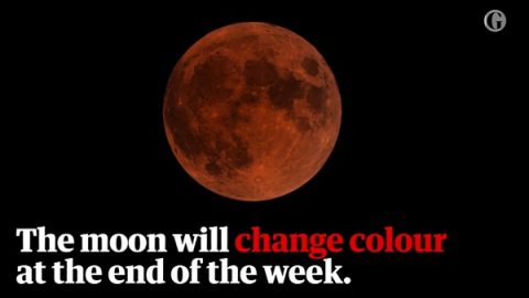 Blood Moon to Reappear—the Great, Terrible Day of Jehovah Approaches!