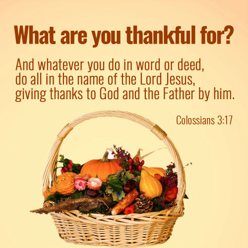Colossians 3:17 - Do All in the Name of the Lord Jesus, Bible Verse Image