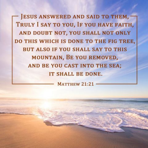 Matthew 21:21 - Have Faith, and Doubt Not, Bible Quote Image