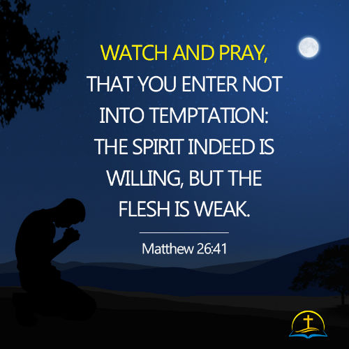 Matthew 26:41 - Watch and Pray, Daily Bible Reading