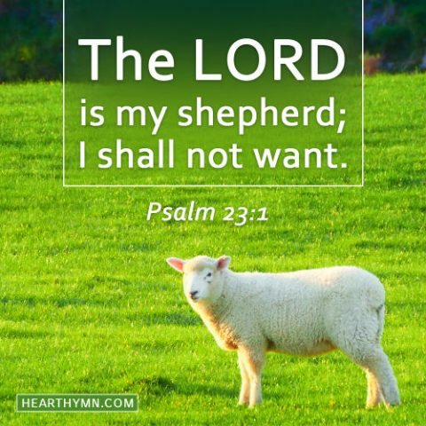 Psalm 23:1 - The Lord Is My Shepherd, Daily Bible Reading