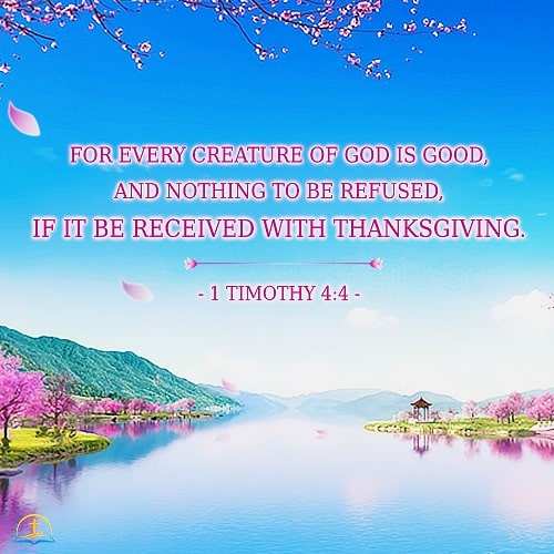 1 Timothy 4:4 Bible Verse Image for Thanksgiving