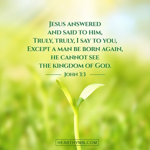 John 3:3 Bible Verse Image