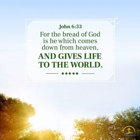 John 6:33 Bible Verse Image