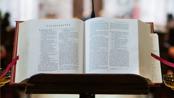 understanding the content of the bible