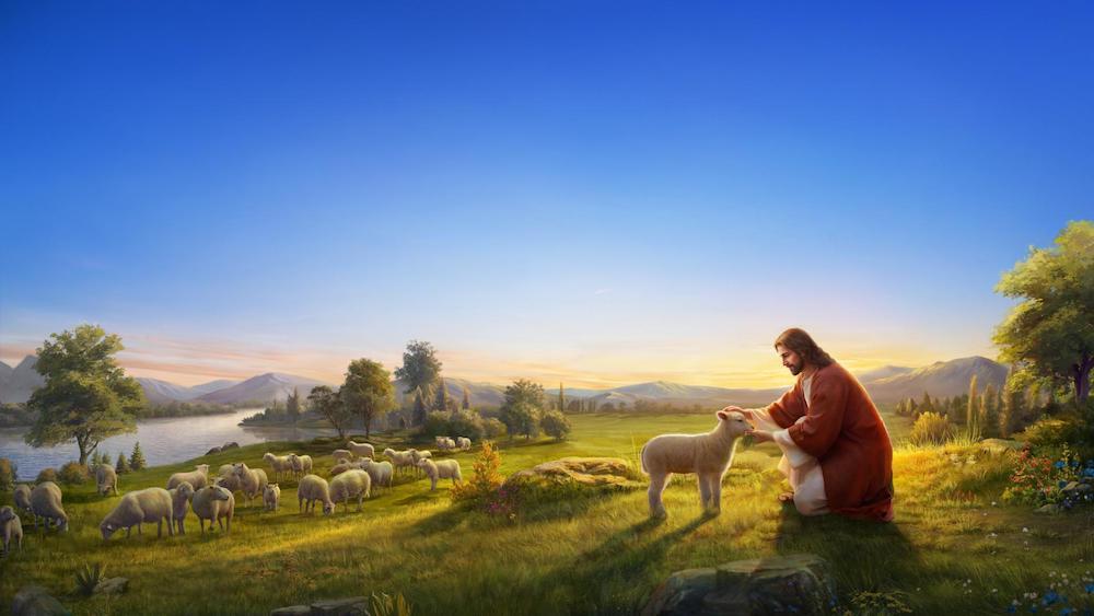 Feel Jesus' Love for Mankind