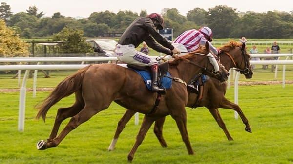 the horses racing