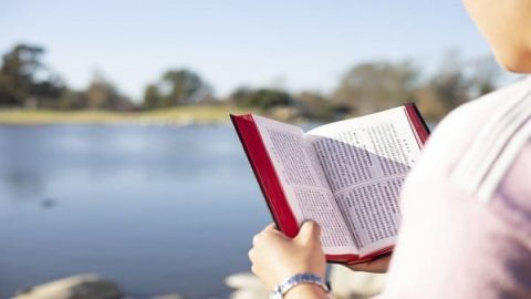 A Christian reading the Bible outdoors
