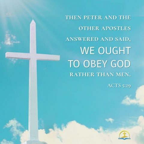 Obey God Rather Than Man - Acts 5:29 - Bible Verse of the Day