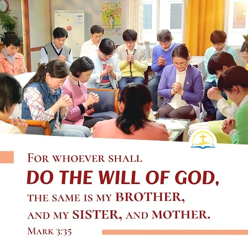 Who Is My Mother and Who Is My Brother? - Mark 3:35 - Bible Verse of the Day
