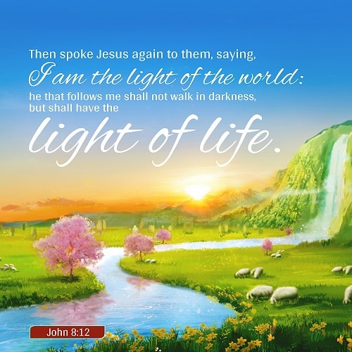 I Am the Light of the World - John 8:12 - Daily Devotional