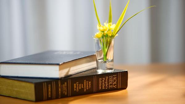 """What Does """"All Scripture Is Given by Inspiration of God"""" Refer To?"""