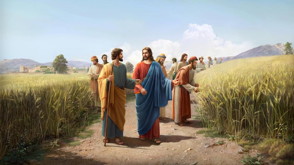 the Lord Jesus not keep the sabbath day