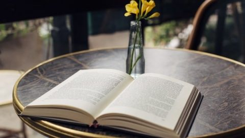 Books open on the table