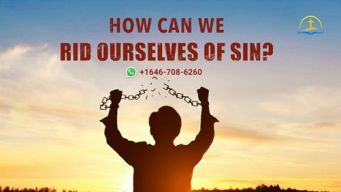 How can we rid ourselves of sin