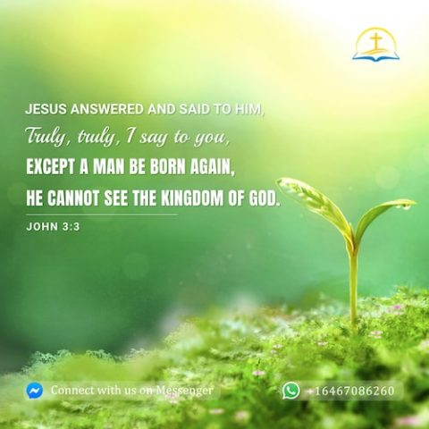 True Meaning of Being Born Again | A Commentary on John 3:3 | Bible Verse of the Day