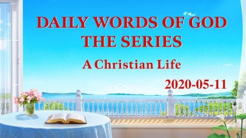 """Daily Manna """"Beholding the Appearance of God in His Judgment and Chastisement"""" (Excerpt 2)"""