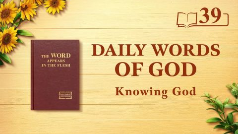 """God's Work, God's Disposition, and God Himself II"" (Excerpt 39)"