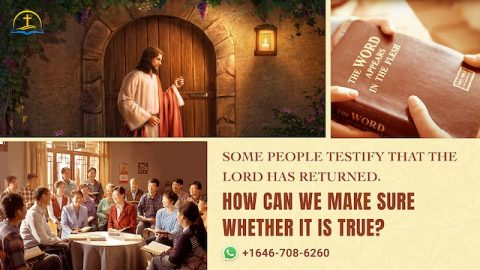 Some People Testify That the Lord Has Returned. How Can We Make Sure Whether It Is True?